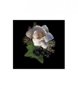Noble VIII Rococo Magnolia